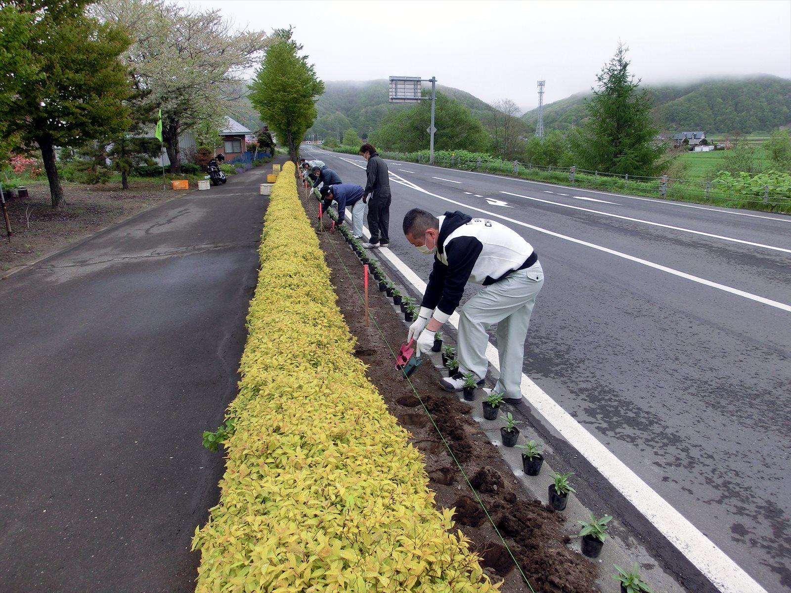 『義経花の応援団』フラワータウンフェスタへの参加